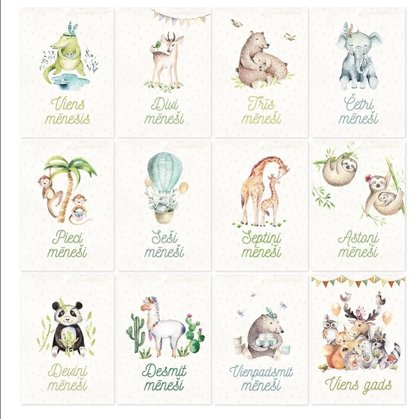Baby Month Cards, JUNGLE ANIMALS